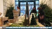 Les bons conseils de Sophie Ferjani pour décorer son sapin de Noël