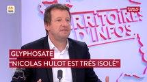 Glyphosate: «Nicolas Hulot est très isolé» juge Yannick Jadot