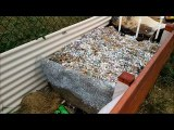 RM0035 - Core Raised Bed Extention and Q&A