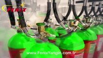 Argon Gazlı Yangın Söndürme Sistemleri   FENİX YANGIN