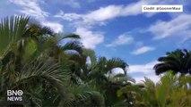 Nuclear Attack Warning Siren Wails Across Hawaii