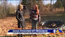 Family Whose Dogs were Poisoned by Neighbor Are Now Helping Other Animals