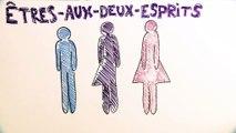 Identité de genre : les Êtres-aux-deux-Esprits dans la société amérindienne
