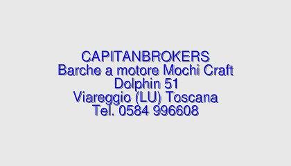MOCHI CRAFT Dolphin 51