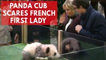 France's first baby panda growls as 'godmother' Brigitte Macron names her