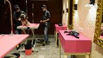 Vacaciones de lujo en la India… en un hotel para perros