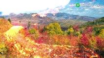 Gunung berapi muncul di New England dapat menjadi gunung berapi suatu hari nanti - TomoNews