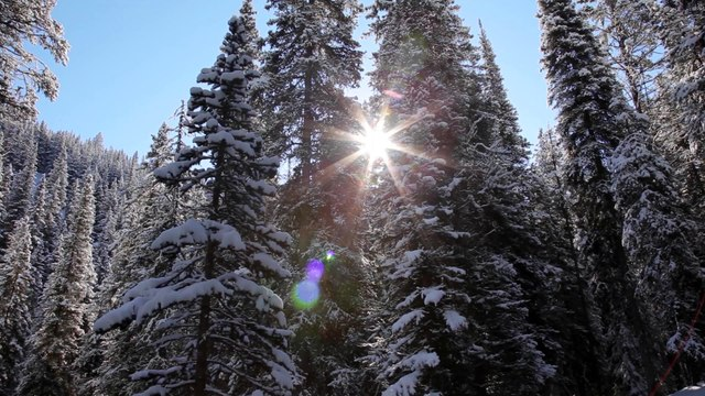 A Short MeditationWinterof  Natures Blessings & Holiday.