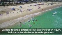 Australie: des drones sur les plages à la recherche de requins