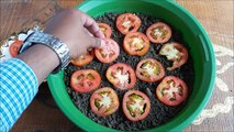 Grow Tomatoes from Tomatoes (Easiest Method Ever With Updates)-23gT5g4k400