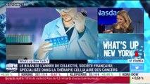 What's Up New York: Cellectis, société française spécialisée dans la thérapie cellulaire des cancers - 13/12