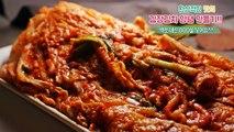 김장김치양념 황금비율!액젓대신 OOO을 넣어요~(김장김치담그기,kimchi ,キムチ,Korean food)-데라세르나-Hl4fUTL93VU