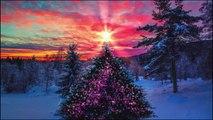 Feliz Aniversario e um Feliz Natal