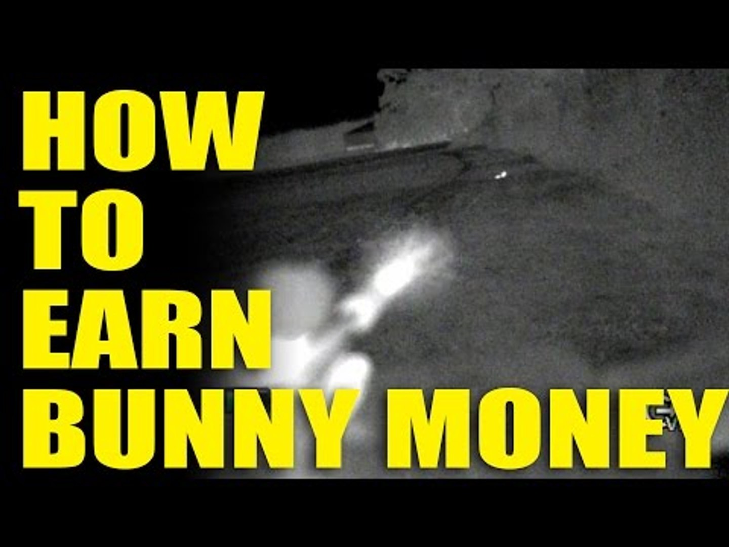 How to Earn 'Bunny Money'
