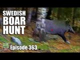Fieldsports Britain - Swedish Boar Hunt