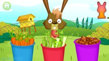 Fun Animals Care Kids Games - Cleaning & Bath For Farm Animals - Baby Learn Farm Animals & Farm Work-1fZIVCUO3qo