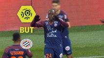 But Jérôme ROUSSILLON (20ème) / Montpellier Hérault SC - FC Metz - (1-3) - (MHSC-FCM) / 2017-18
