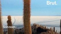 En Bolivie, la richesse du magnifique désert Salar d'Uyuni pourrait aussi mener à sa destruction