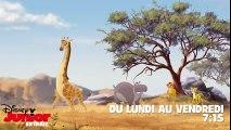 La Garde du Roi Lion - On ne réveille pas un crocodile qui dort - YouTube_2