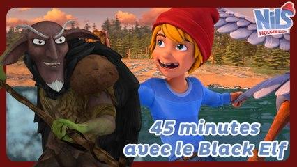 45min de Nils Holgersson avec le Black Elf