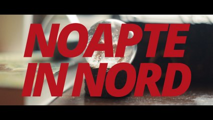 The Kryptonite Sparks - Noapte in Nord