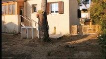 A vendre - Maison/villa - Carry-le-Rouet (13620) - 3 pièces - 85m²