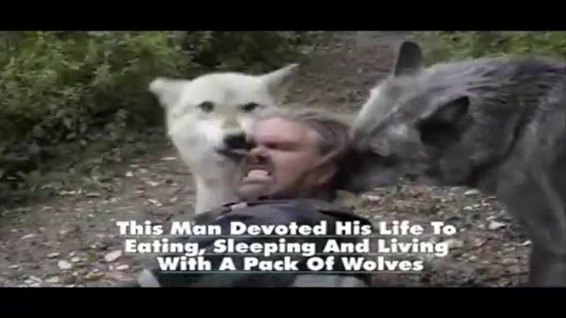KURT ADAMIN KURTLAR ile YASAMI - WOLF MAN and WOLVES LiFE