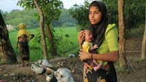 Stateless and persecuted: insight into the Rohingya plight