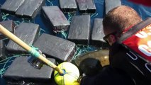 Coast guard rescue turtle trapped in 800kg of cocaine