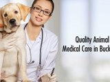 Quality Animal Medical Care in Bucktown