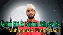 Muhammad Umer Qadri - Aamna Bibi Ke Gulshan Mein | Naat | Prophet Mohammad PBH | HD Video