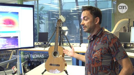 Physics of the guitar