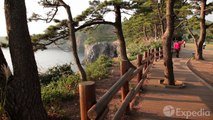 Olle Walking Paths, Jeju Island Vacation Travel Guide _ Expedia-Zz07opdQDEY
