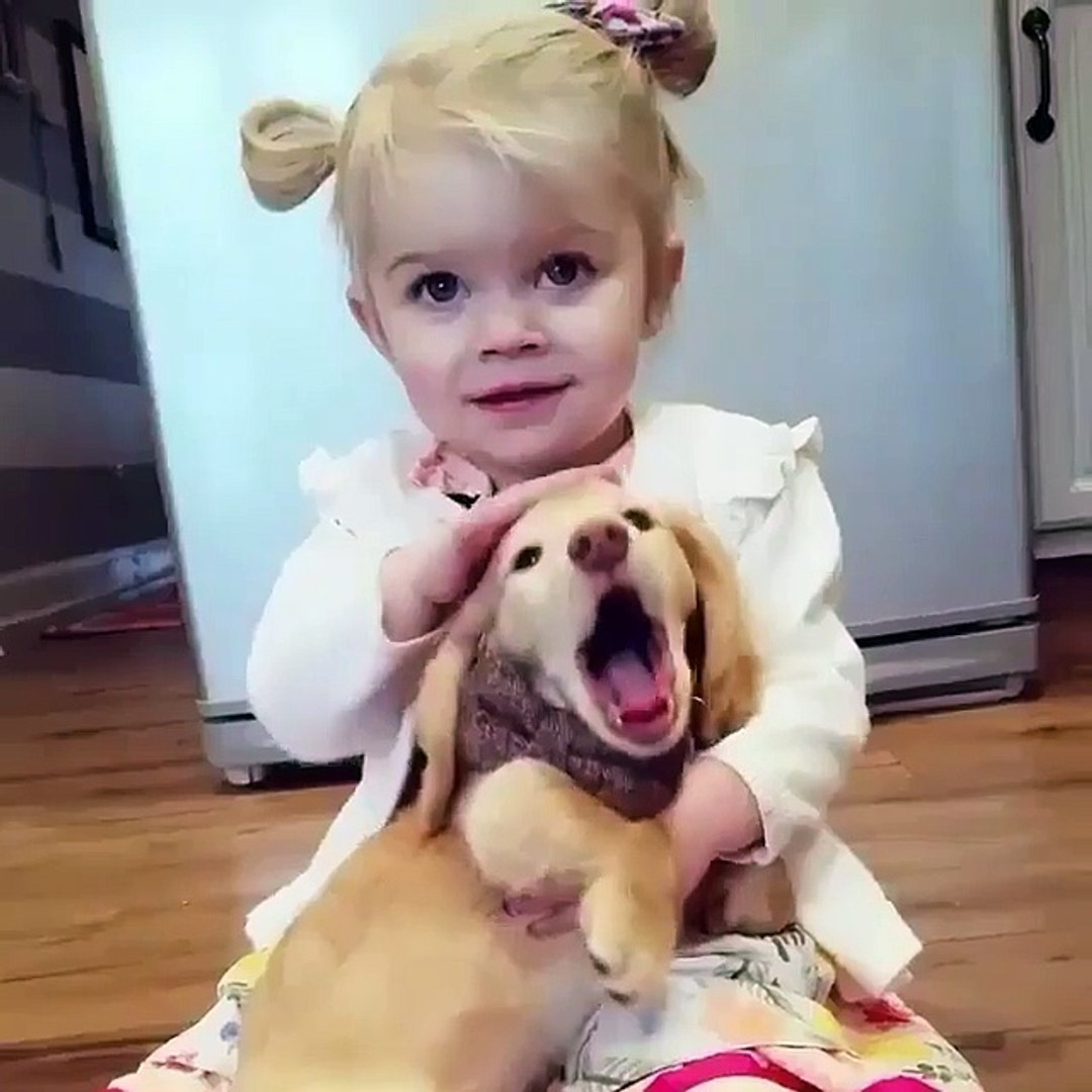 Phòng khám đa khoa Đại Đông - Baby and pets