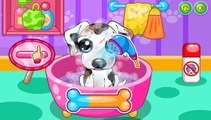 kid dog - bingo dog song - nursery rhyme with lyrics - cartoon animation for chi