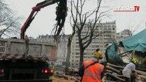 Un arbre tombe sur un manège square des Batignolles