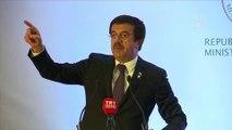 Tunus-Türkiye Yatırım ve İş Forumu - Nihat Zeybekci (3) - TUNUS