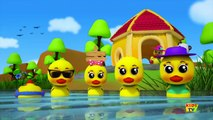 Five Little Ducks Went Swimming One Day Nursery Rhymes Songs For children B