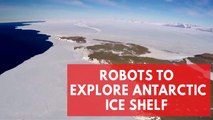 Robo drones to study melting Antarctic ice shelf impact on sea levels