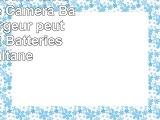 Invero NPBN1 NP BN1 LCD Double Caméra Batterie Chargeur peut charger 2 Batteries