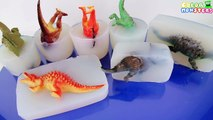 Learn Dinosaurs Name Sounds Dinosaurs - Learn Names Of Dinosaurs - Dinosaurs In Jelly Opening