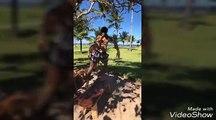Neymar Mbappe Cavani Marquinhos sport meme en vacances