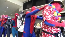SPIDER-MAN  Spider-Verse Mayhem at MegaCon! Real Life Superhero Movie - TheSeanWardShow   Superheroes   Spiderman   Superman   Frozen Elsa   Joker