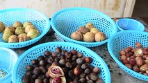 Nutmeg Factory - Amazing Products Using Nutmegs, Penang, Malaysia