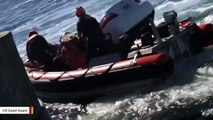 Watch Coast Guard Pull Man To Safety From Sinking Car