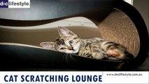 Cat Scratching Lounge -dnclifestyle.com.au