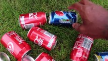 My Daddy Crushed 150 Soda Drinks Under Car! Coca Cola VS Pepsi Explosion