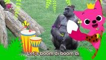 Boom Di Boom Di Gorilla _ Gorilla _ Animal Songs _ Pinkfong So