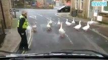 Polis otosunun önünü kestiler