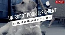 Laïka : un robot pour les chiens